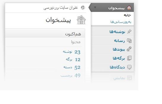 طراحی سایت وردپرس در شیراز